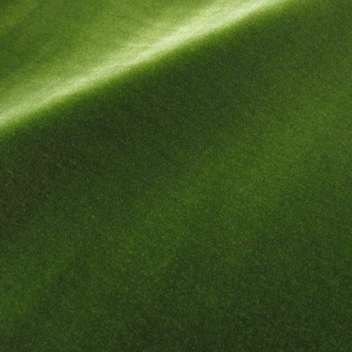 サロンモケットサロングリーン2